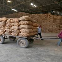 Govt procures 330 lakh tonnes kharif paddy so far at MSP for Rs 62,278 crore
