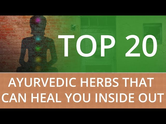 TOP 20 AYURVEDIC HERBS THAT CAN HEAL YOU INSIDE OUT
