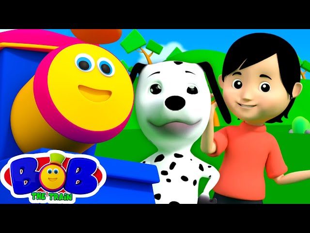 Bingo The Dog Song | Preschool Nursery Rhymes & Kids Songs - Bob The Train | Kids Tv